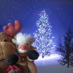 Peluches de Navidad