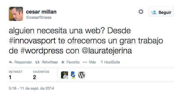Páginas web – Servicios – Laura Tejerina