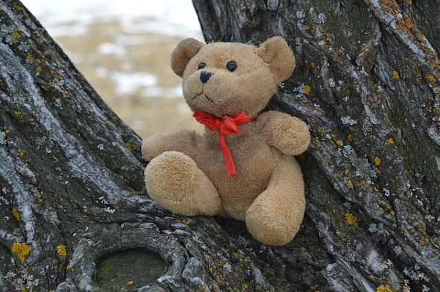 El árbol de los peluches: una curiosa leyenda – Laura Tejerina