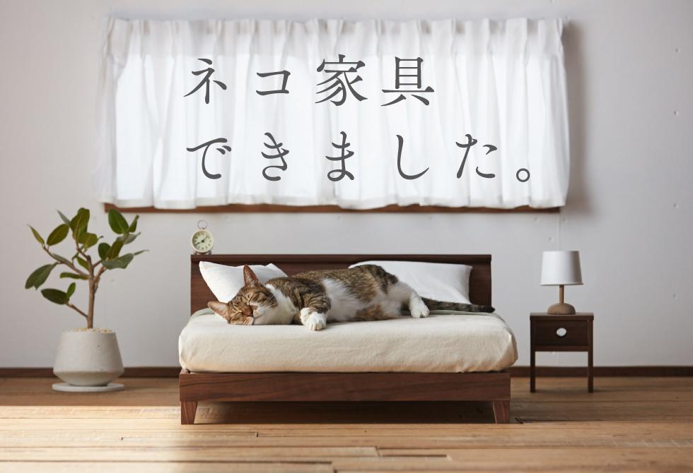Muebles para gatos: la nueva locura felina en Internet – Laura Tejerina
