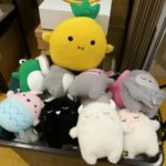 noodoll peluches