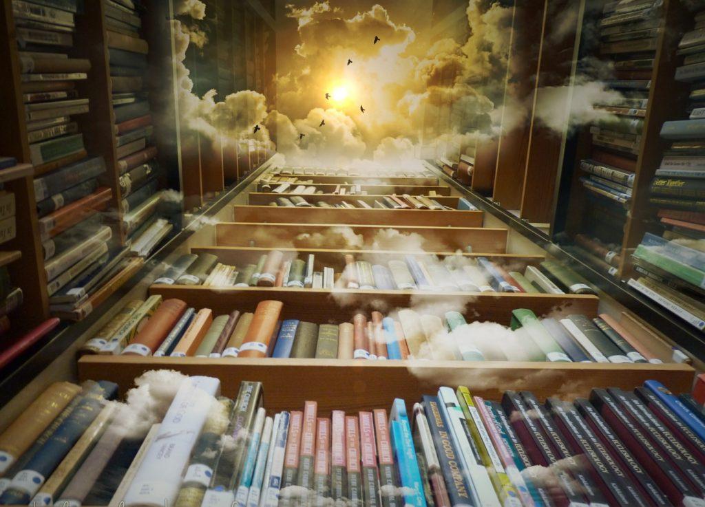 mindbookness libros