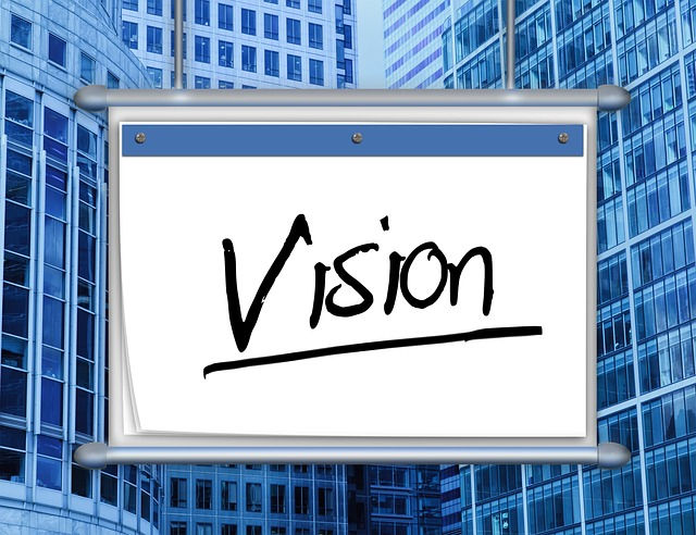 año de 12 semanas semana 1 visión